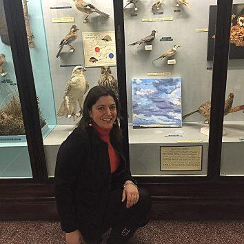 """Mostra """"I quattro elementi """"Museo di Storia Naturale Genova"""